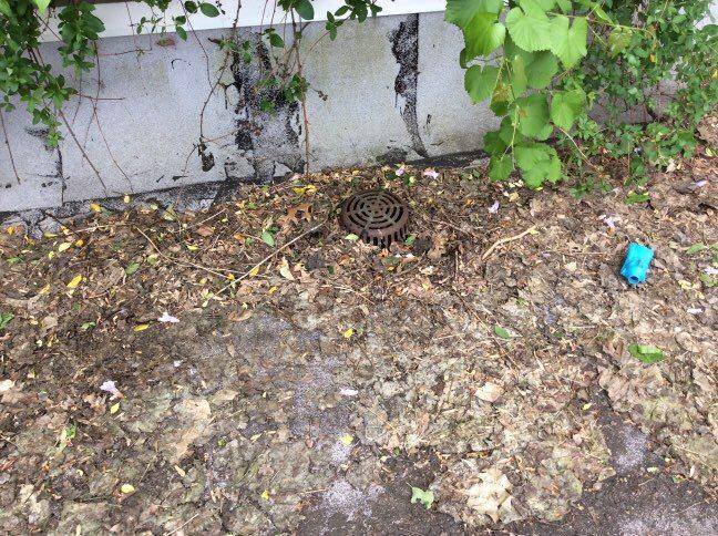 Commercial Roofing Contractor Service - debris clogging drain